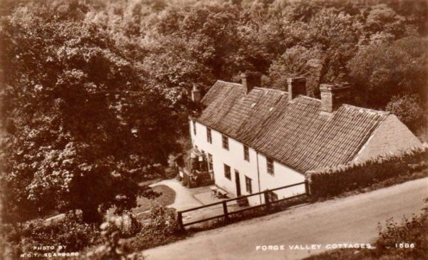 Forge Valley cottages