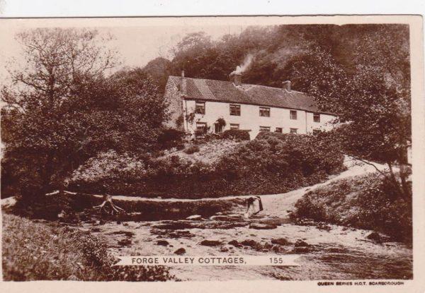 Forge Valley Cottages, River Derwent