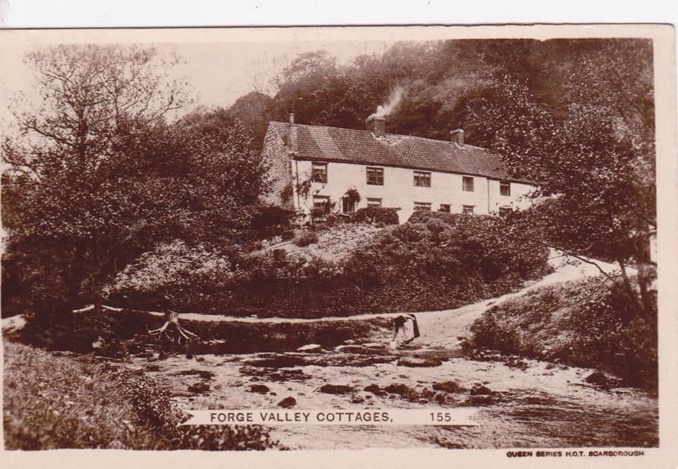 Forge Valley Cottages, River Derwent