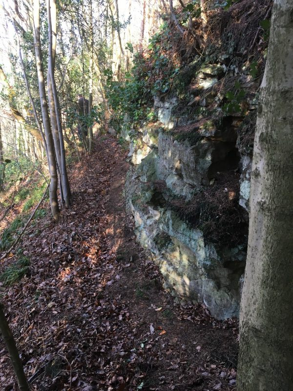 Ruston Cliff, Forge Valley