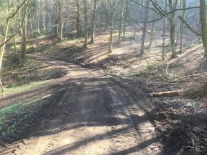 Middle Track, Raincliffe Woods