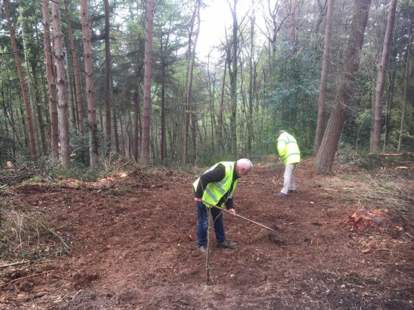 Volunteers, Raincliffe Wood